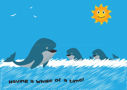 Having a Whale of a time!