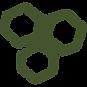 Hexagons - Green copy.png