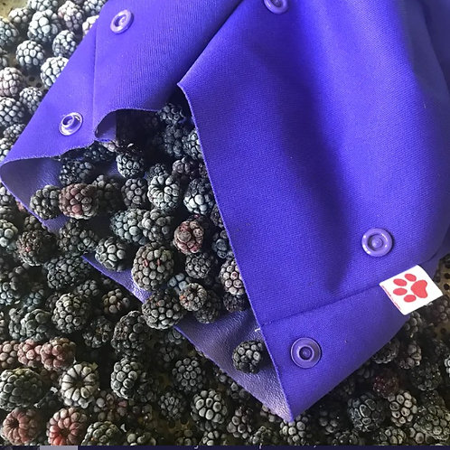 Flaxie Freeze Grape