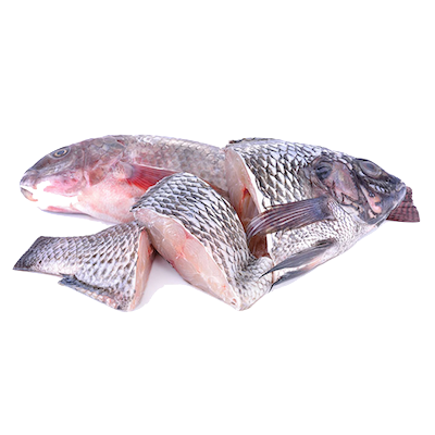 Tilapia Fish (Steak or Whole)