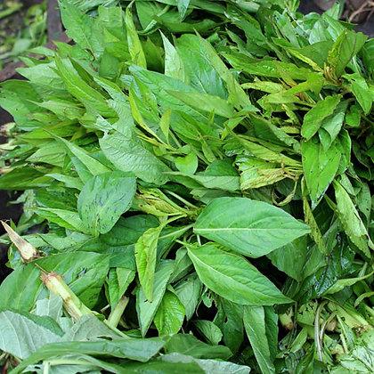 Biteku-Teku Leaves (Callaloo /Efo Tele)