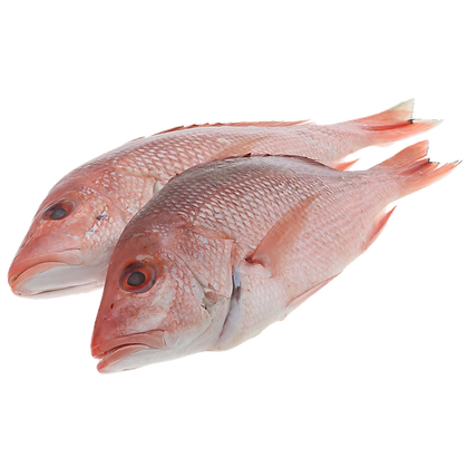 Red Snapper Fish 1kg