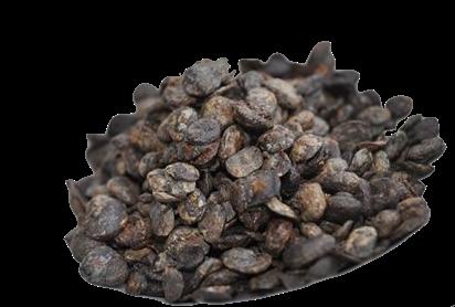 Frozen Locust Beans