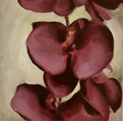ORCHID FUCHSIA (sold)