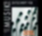 http://www.discogs.com/Various-50-Ans-De-Musique-Electroacoustique-Au-Groupe-De-Recherches-Musicales/release/409683
