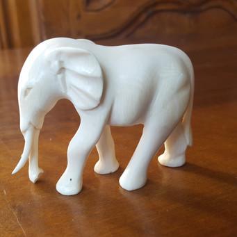 Elephant Elfenbein