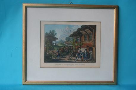 Alpabgang / Stich