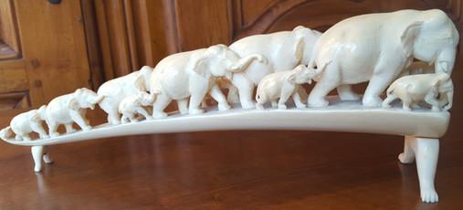 Elephanten Zahn