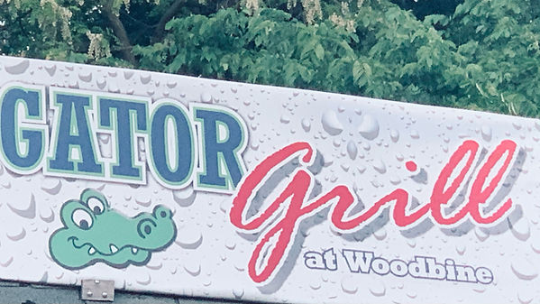 gator grill.jpeg