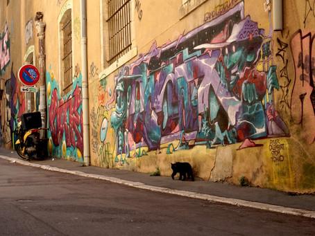 Balade #1 - Le Panier de Sadi Carnot au Fort Saint Jean