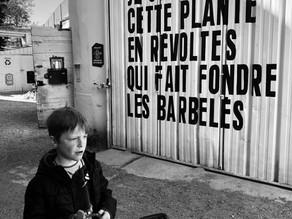 Balade photographique #2 - Du Palais Longchamp au Couvent Levat
