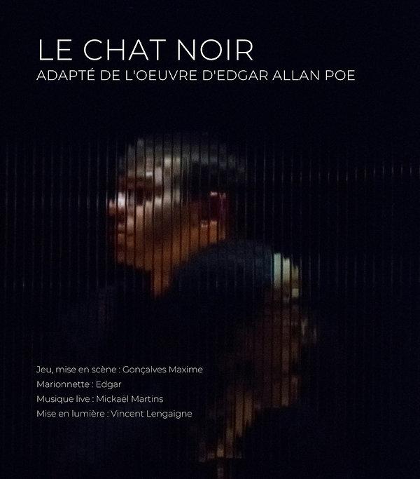 Affiche_Chat_Noir_modifié.jpg