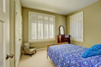 green-olive-bedroom-interior-blue-bed-wood-cabinet-drawers-windows-dressed-plantation-shut