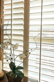 plantation-style-wood-shutters-new-home-photo-33250532.jpg