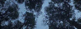 Screen Shot 2020-08-28 at 10.32.05 PM.pn
