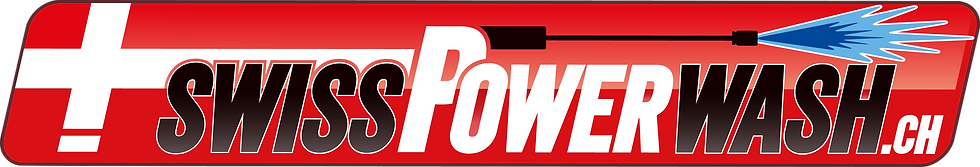 logo spw nuovo.png