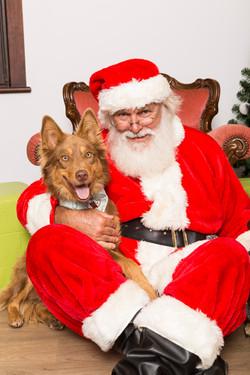 QOW_Santa14