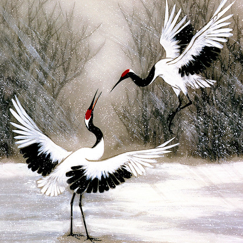 Crane Prints
