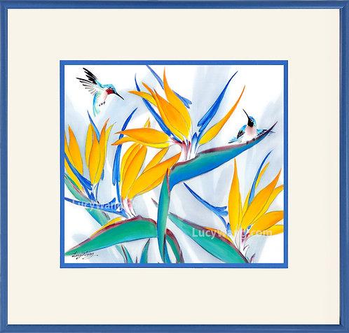 Bird of Paradise & Hummingbirds