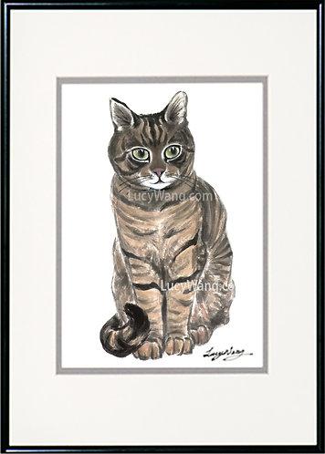 Tabby Cat #2