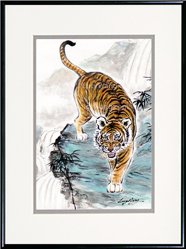 Tiger / Waterfalls