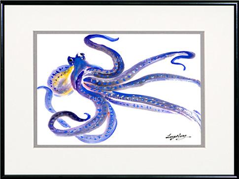 Octopus-a