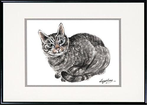 Tabby Cat #1