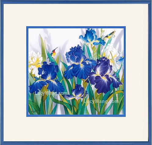 Irises & Hummingbirds #1