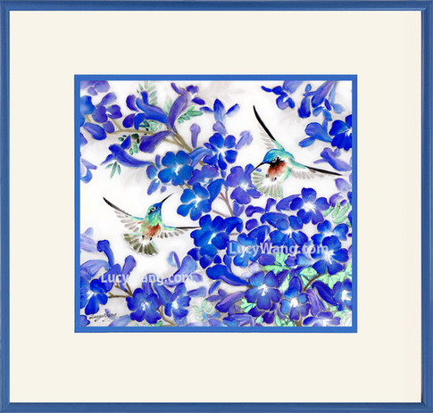 Jacarenda & Hummingbirds