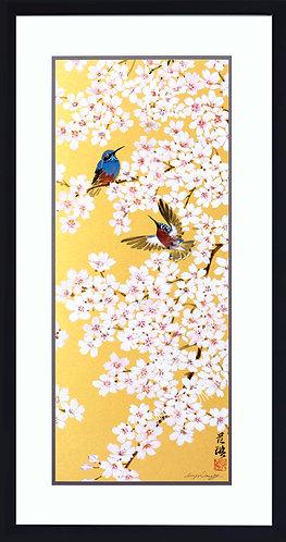 Cherry Blossoms & Hummingbirds