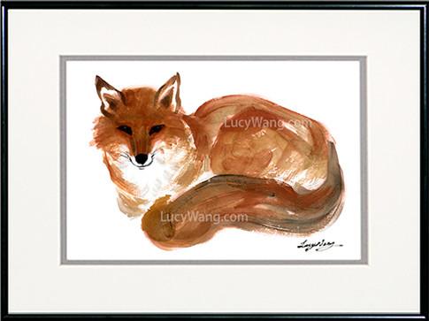 Red Fox-B