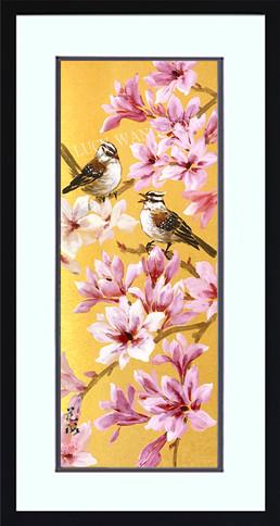 Magnolia Sparrow-4-6-21.jpg