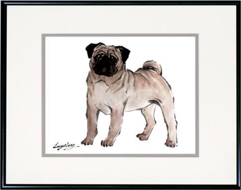 Pug-Brown