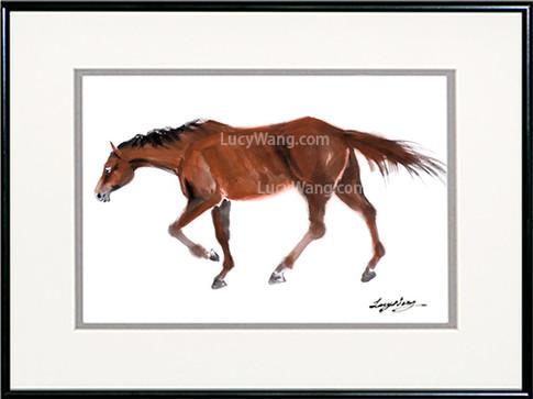 Horse-#1