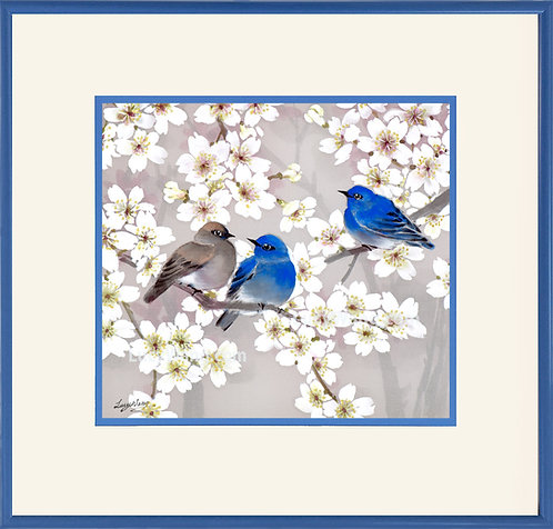 Cherry Blossoms & Blue Mountain Birds