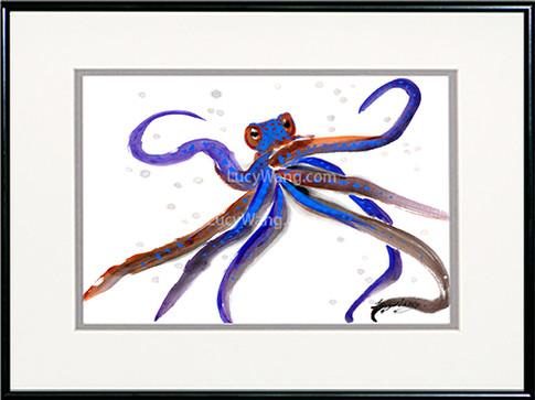 Octopus-b