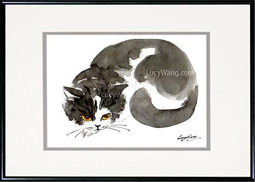 Resting Black & White Cat
