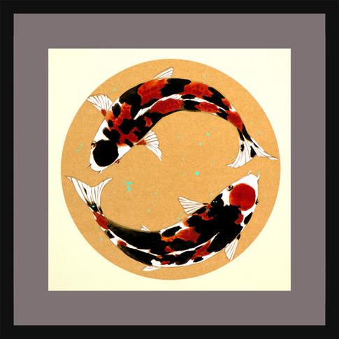 Yin & Yang Kooi Fish