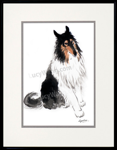 Wix-Collie 2-Lucy Wang.jpg