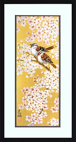 Cherry Blossoms & White-Crowned Sparrows