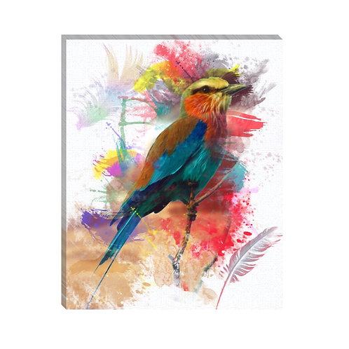 Efecto colibrí