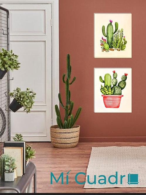 Set Cactus