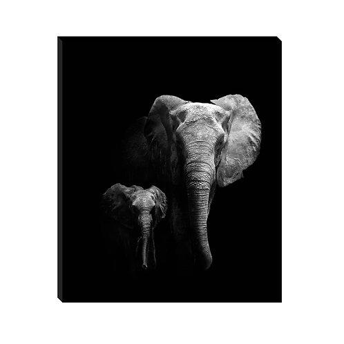 Madre e hijo elefantes