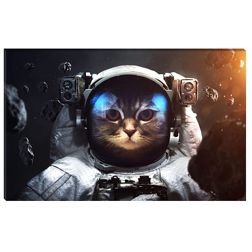 Espacio Felino