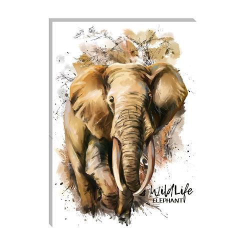 Wild life elefante
