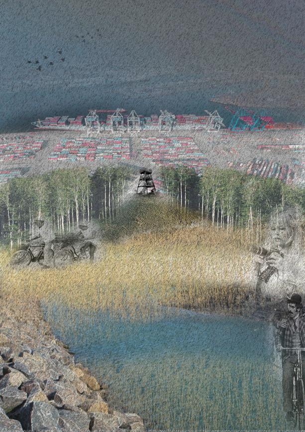 3 landscapes