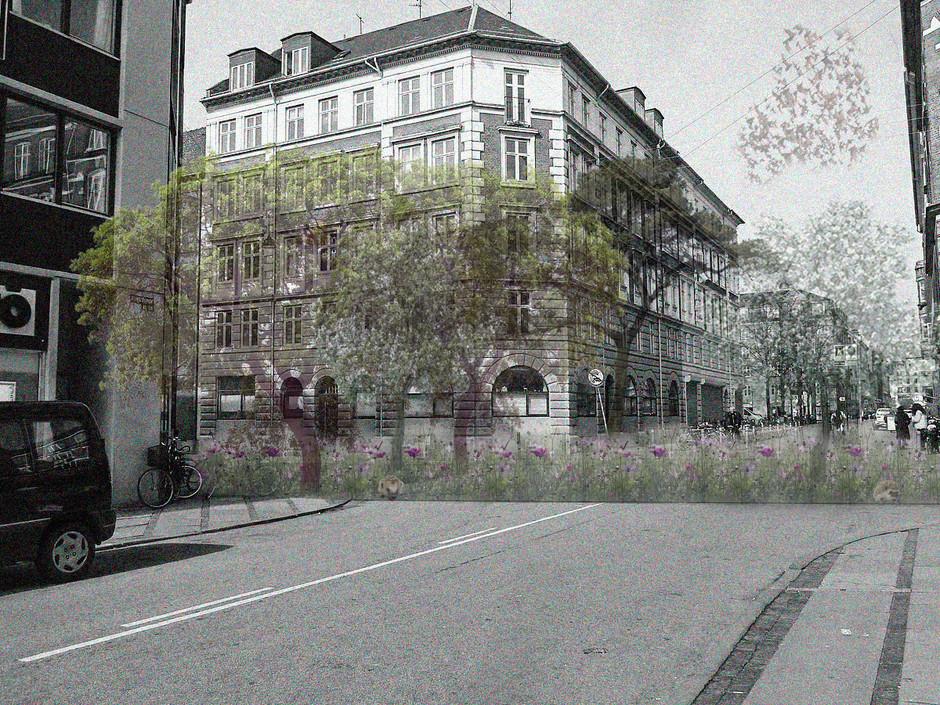 Collage of medow at Korsgade
