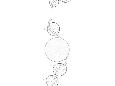 DESIGN: Circle shaped plantingbeds along Trongårdsparken