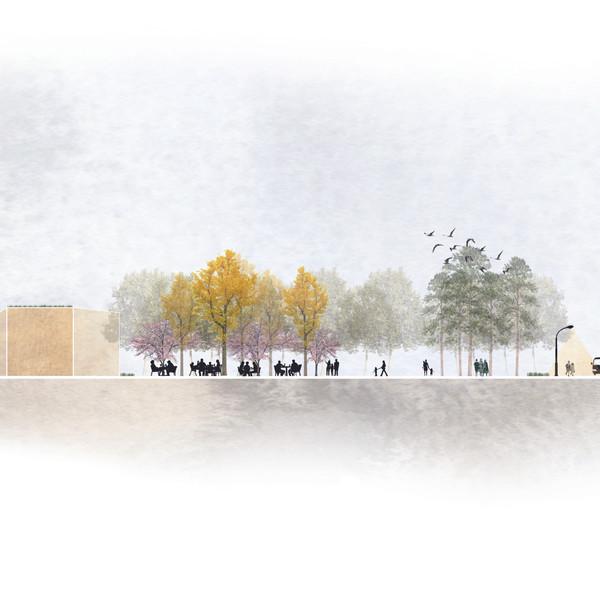 Sectioncut over Trongårdsparken