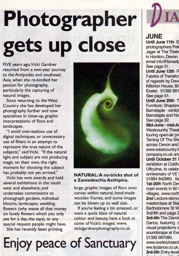 Paper clipping3
